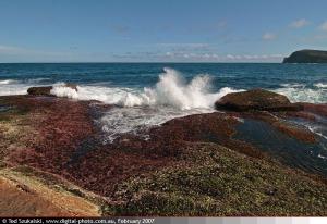 Copacabana-NSW-Australia-Ocean-View-IMG_20070218_6792